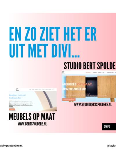 divi website voorbeelden